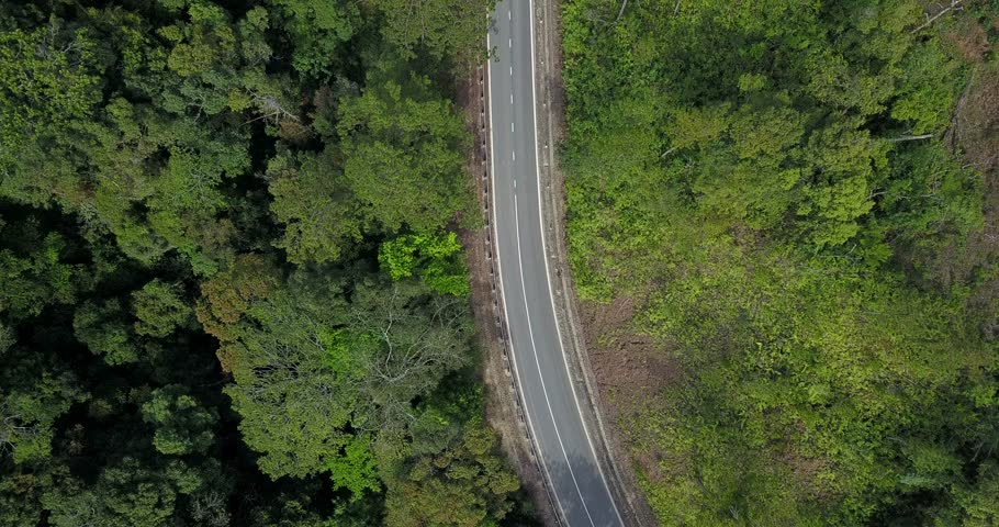 aerial view of little traffic road among green forrest #1022869780