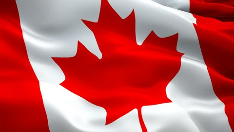 Canada flag video waving in wind. Realistic Canadian Flag background. Red maple leaf flag Closeup 1080p HD video. Ottawa 1080p Full HD 1920X1080 footage video waving.Canada seamlessly looping footage
