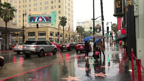LOS ANGELES, Feb 2nd,2019: People with umbrellas walk along the stars on Hollywood Boulevard's Walk of Fame in front of the Chinese Theatre during a rainstorm with Roosevelt hotel in background. Sound