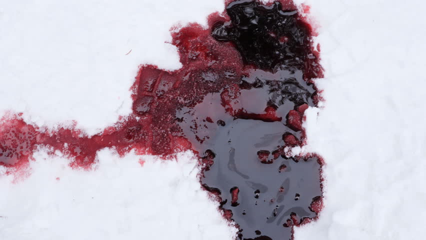 Trail leading to pool of blood in the snow. Winter death. Horror. Murder. NOTE: Fake Blood with genuine snow.