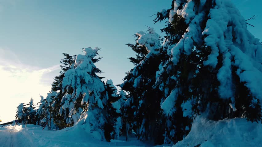 Trees with a lot of snow in winter time in czech mountains. It is situated in Ore Mountains in western Bohemia. | Shutterstock HD Video #1024235060