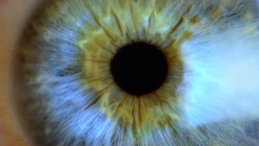Extreme close up human eye iris  #1024275110