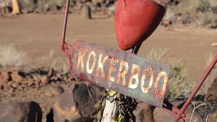 Sign to Beautiful Quivertree Kokerboom Forest in Southern Namibia desert | Shutterstock HD Video #1024366040