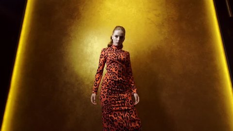 Cute Fashion Model Posing On A Gold Background. Woman In Orange Black Dress.