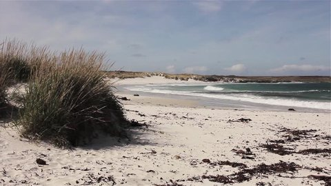View of Coastal Landscape of Falkland Islands with White Sandy Beach, Turquoise Water and Fluffy Clouds.