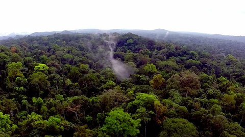 Flying over the rain-forest. Shooting from the air over the tropics. Equatorial Guinea.  / Fog over the tropical forest. Flying over the African jungle