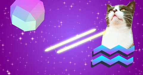 Minimal animation art. Gif design. Cat eye lasers