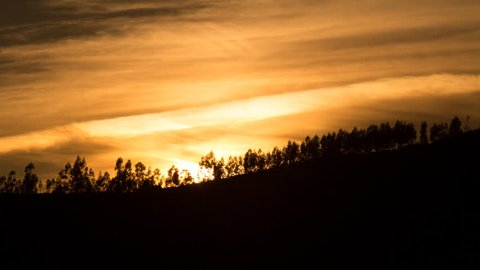 Stunning timelapse shot of the sun setting behind a silhouetted forest