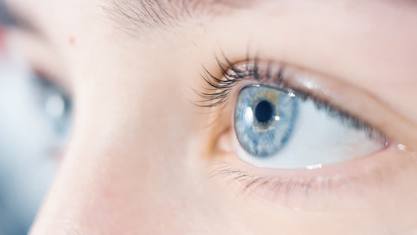 Blue human eye with reflections looking and blinking #1025530670
