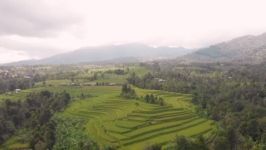 Tracking back from Balinese Rice Stacks to reveal the Misty Mountains and beautiful colours of the paddies, Bali, Indonesia | Shutterstock HD Video #1025847770