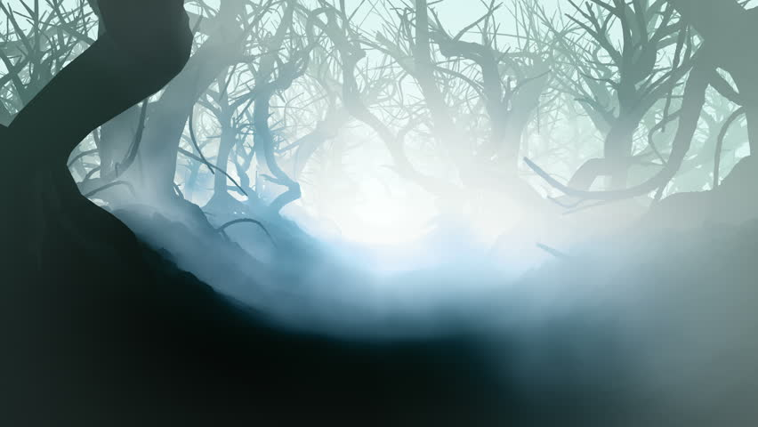 A mysterious, magical forest. A terrible dark passage through the mist and smoke. An amazing climate of fear, horror and curiosities. The movie is looped. | Shutterstock HD Video #1025967170