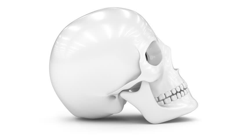 Skull. Looping footage has 4K resolution. Prores 4444. 3D Illustration. | Shutterstock HD Video #1025984060