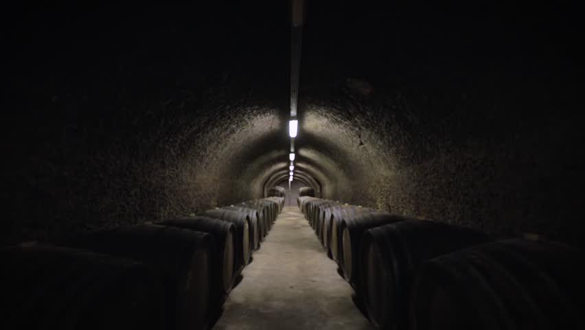 Wine barrels in a vineyard forwardement | Shutterstock HD Video #1026027680