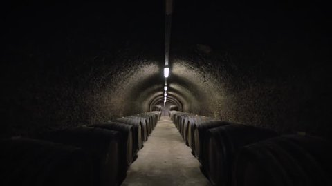 Wine barrels in a vineyard forwardement