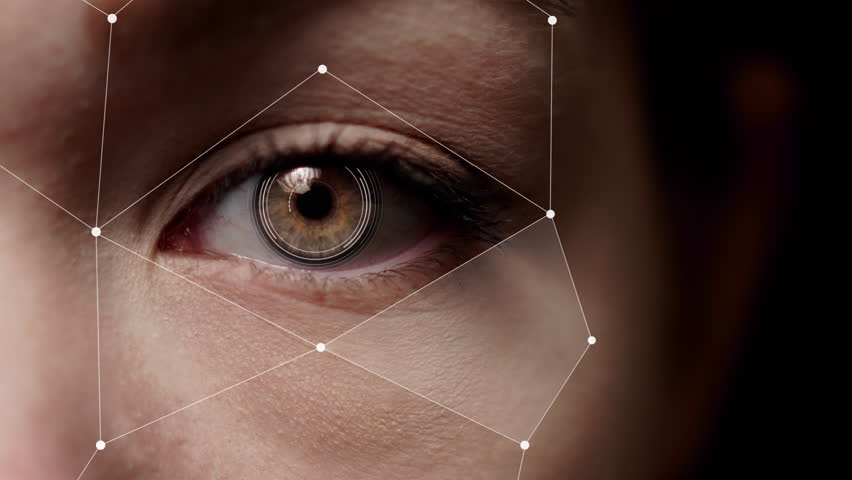 Half face facial recognition. Augmented reality. Brown female eye scan. | Shutterstock HD Video #1026328310