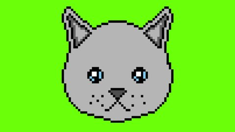 The pixel cat moves with his eyes and shows the tongue on a green screen . Ready to use in any project.