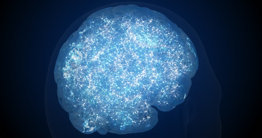 Neurons in the brain. 3d visualization of neuroactivity. The work of synapses. Tomography of the brain.   Shutterstock HD Video #1026508880