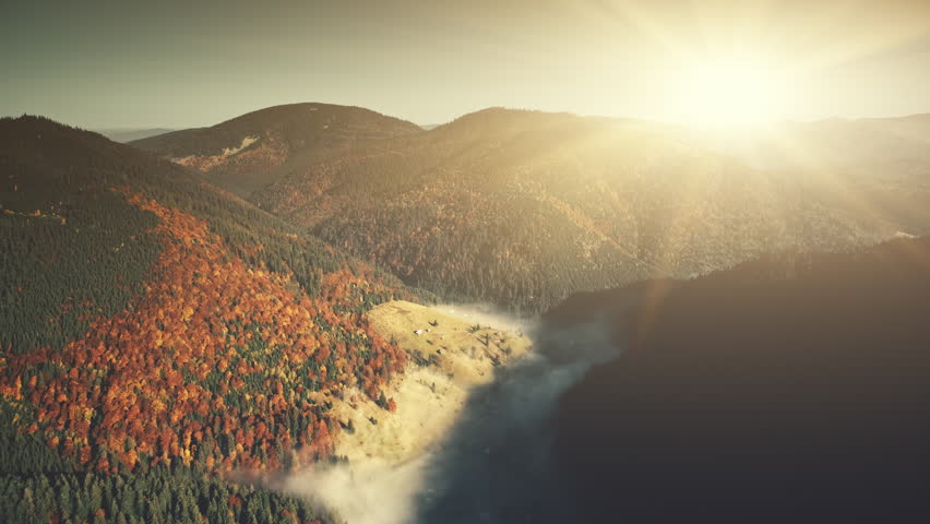 Sunrise High Mountain Forest Slope Aerial View. Sunny Colorful Highland Wood Wild Nature Habitat Overview. Foggy Ravine Scenery Coniferous Tree Clean Ecology Concept Drone Flight Footage 4K (UHD)