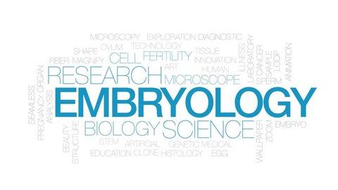 Embryology animated word cloud. Kinetic typography.