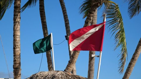 Red and green flags waving on wind at top of lifeguard thatched palapa. Roof of baywatch tower
