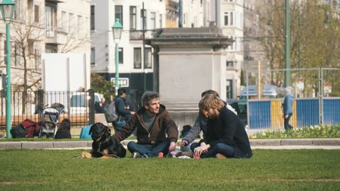 Brussels, Belgium - March 30, 2019:Three persons with a dog sitting on a green lawn in spring in Belgium in slo-mo