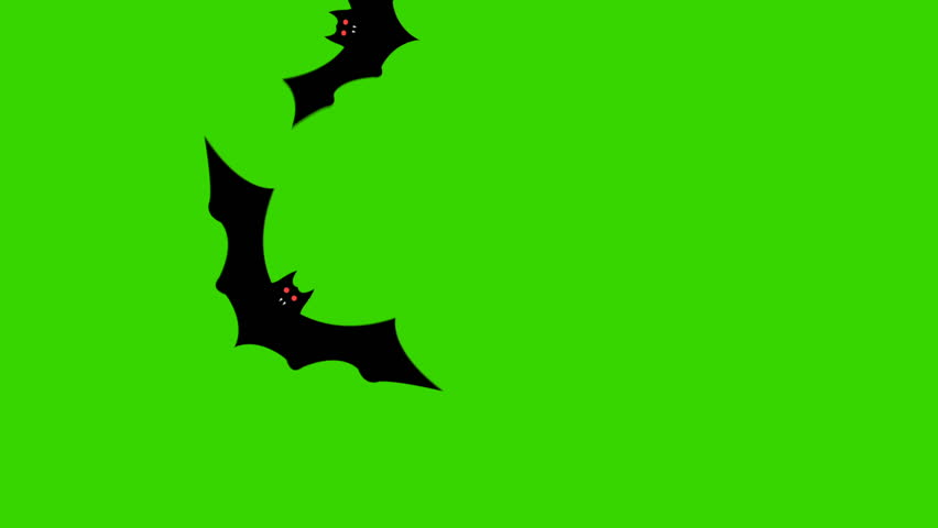 Cartoon Halloween Bats Flying through the Screen on a Green Screen  | Shutterstock HD Video #1027552520