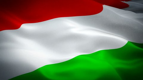 Hungary flag Motion Loop video waving in wind. Realistic Hungarian Flag background. Hungary Flag Looping Closeup 1080p Full HD 1920X1080 footage. Hungary EU European country flags footage video for fi
