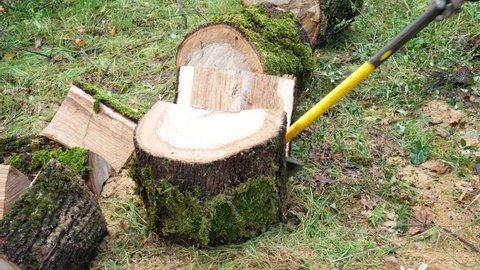man splits firewood with an axe. The wood to heat the home all winter long. Lumberjack chopping oak firewood