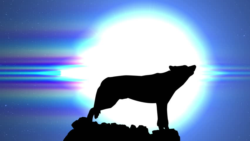 Wolf Silhouette Howling at Moon During Night Animation | Shutterstock HD Video #10278830