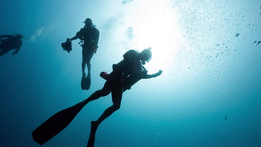 SCUBA Divers ascend in sunlit waters