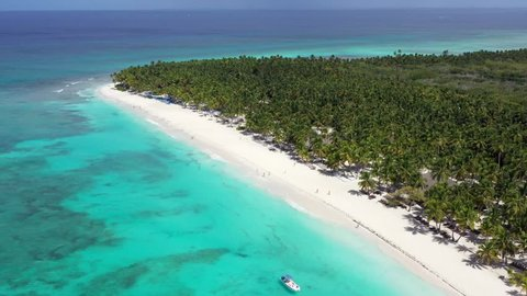 Aerial view from drone on tropical island with coconut palm trees and turquoise caribbean sea. Saona Island. Dominican Republic. Summer Holidays