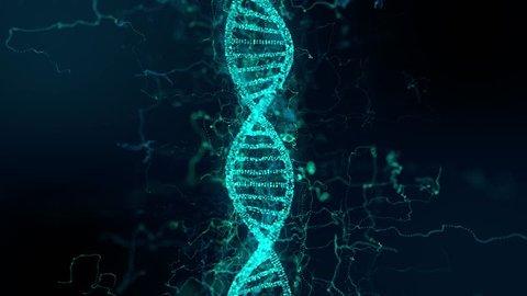 Dna Double Helix Autoimmune Disease Genetic Engineering For Scientific Biotechno