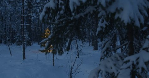 Christmas tree in lights in forest gimbal shot