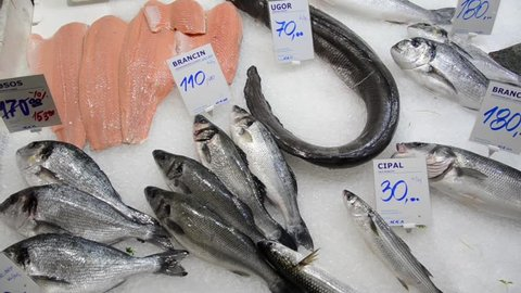 Fishmonger selling fish and seafood. Display of Pilchard. Fishmonger sold fresh fish.  European conger, European bass, Gilt-head bream on ice for sale