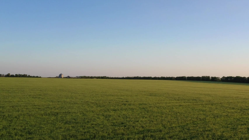 Video from a drone of a green field in the setting sun | Shutterstock HD Video #1030004510