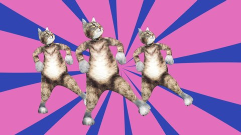Comic tomcats waving paws and tail in an energetic clip summer mood. A cute brown pussycats dancing together in a modern style in tunnel colour space. Cool and the best moves in stylish of 80s and 90s