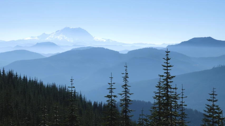 Beautiful view of Mount Rainier in Washington state. Captured on a trail in the Cascade Mountain Range.
