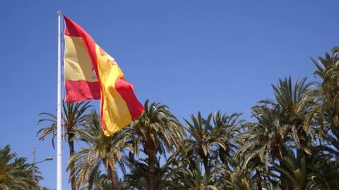 A big Spanish flag is blowing in the wind over the palm trees in the city of Elche. The sky is blue and the sun is shining. Slow motion 4k.