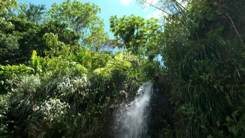 oraille waterfall St Lucia. Saint Lucia jungle with waterfall