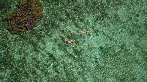 Aerial Spin: People Snorkeling Over a Reef in Lord Howe Island, Australia