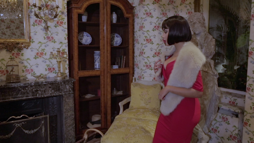 Paris, France - April 8, 2018: Sexy brunette Arab woman in tight red dress touching a vintage bird cage resting on a marble fireplace in a retro hotel with walls adorned with floral tapestry. | Shutterstock HD Video #1032097700