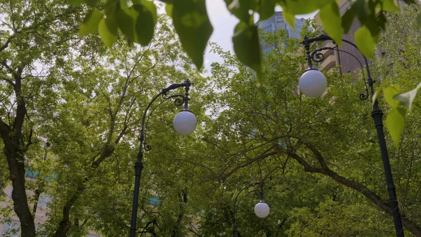 View from the bottom of fashionable old white street lamps in the park near green trees and high skyscrapers against blue cloudy sky. Stock footage. Beautiful urban landscape | Shutterstock HD Video #1033240070