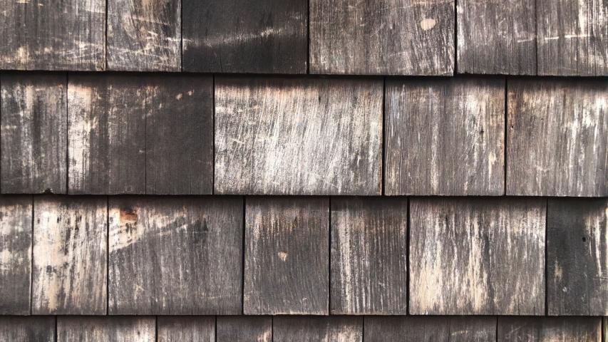 Weathered wood in urban garden | Shutterstock HD Video #1033443230