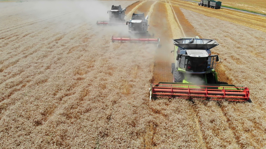 Aerial view of wheat harvest. Drone shot flying over three combine harvesters working on wheat field   Shutterstock HD Video #1034818520
