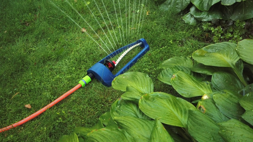 Lawn sprinkler spaying water over green grass.   Shutterstock HD Video #1035206030