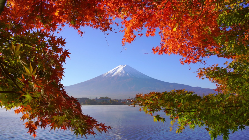 Mountain fuji with red maple in Autumn, Kawaguchiko Lake, Japan | Shutterstock HD Video #1035283400