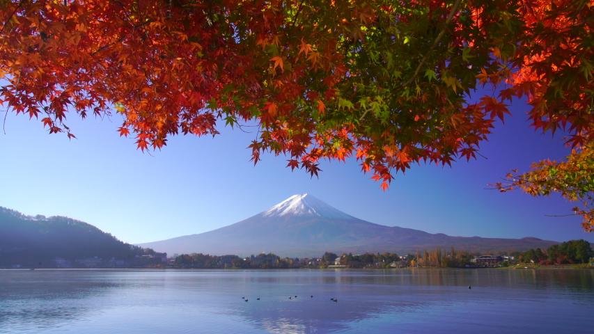 Mountain fuji with red maple in Autumn, Kawaguchiko Lake, Japan | Shutterstock HD Video #1035347870