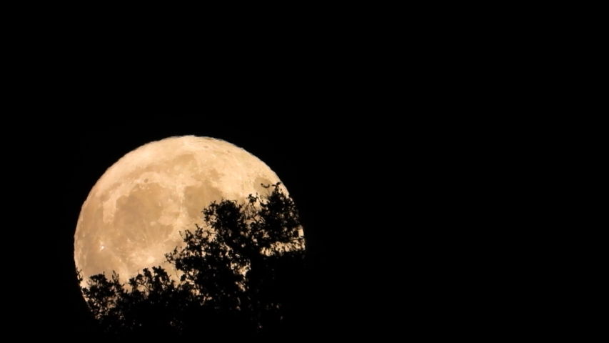 The rising of the September Friday 13th 2019 Harvest Full Moon shown coming up and over a hill top out in the country. | Shutterstock HD Video #1037156570