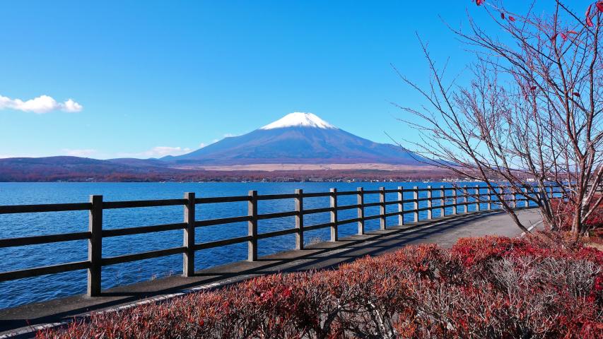 Colorful Autumn with Mountain Fuji in Japan Lake Yamanakako  | Shutterstock HD Video #1037316800