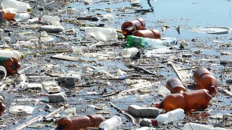 Plastic bottles and others junks polluting the water environment.